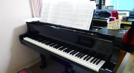 楠本まゆみピアノ教室