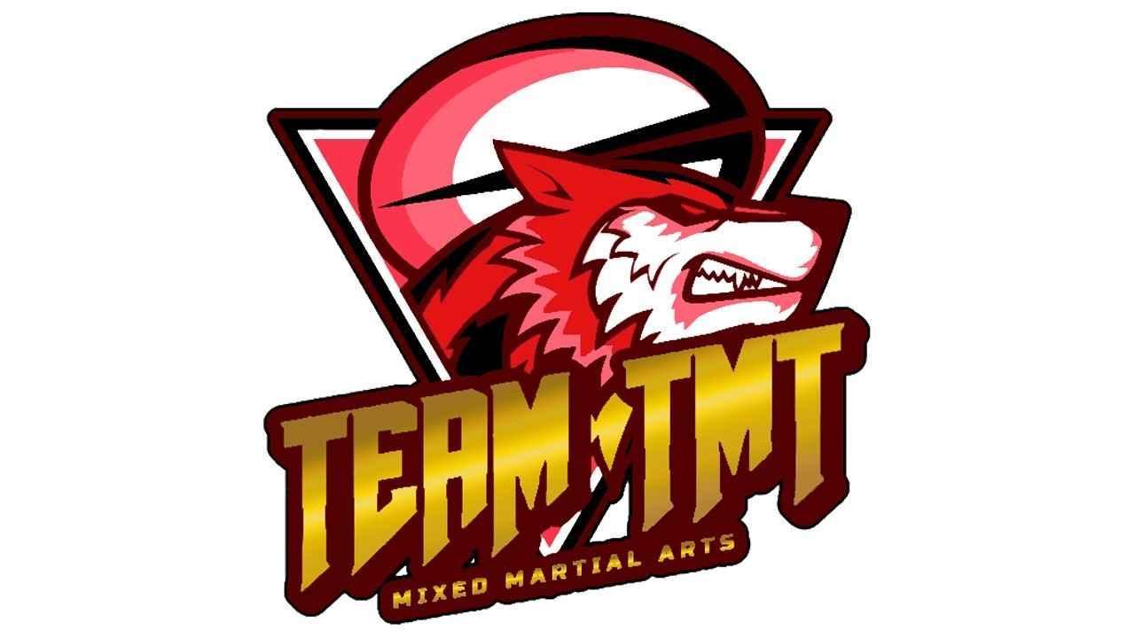 愛知県安城市の総合格闘技チーム「team TMT」