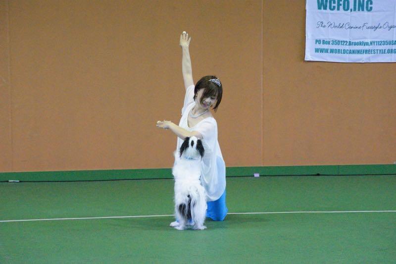 ドッグダンスの為の人間のダンス教室
