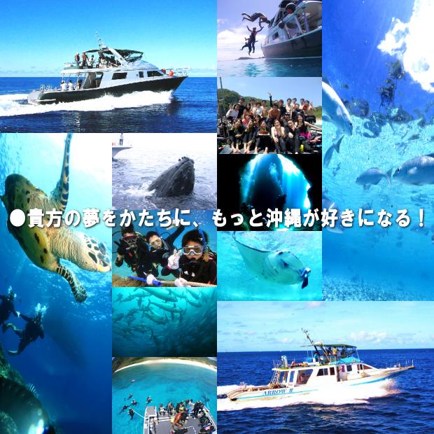 ダイビング スクール ティーダ 沖縄