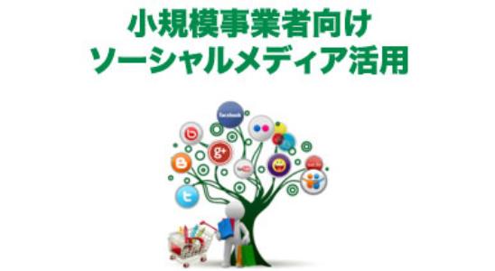 ワイズプロジェクト_デジタルメディア制作教室 オンライン講習