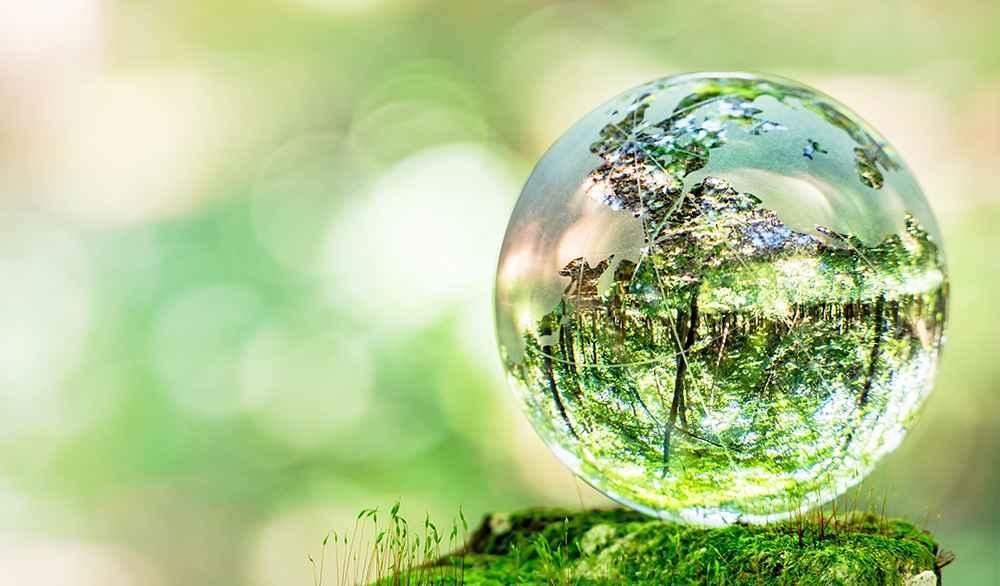 地球の環境を守ろう!〜まずは自分でできることからはじめませんか?〜
