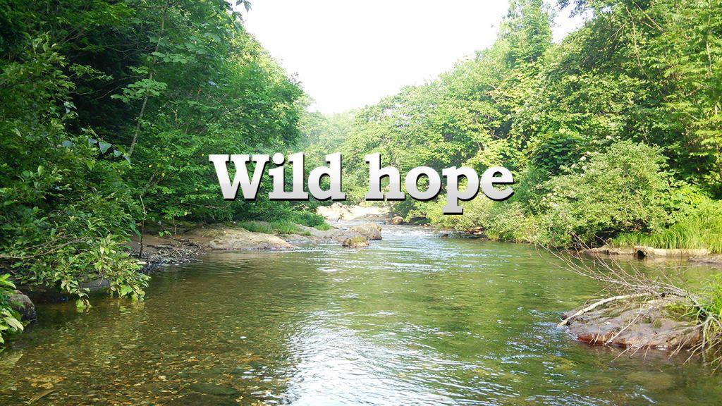 アウトドア教室 Wild hope