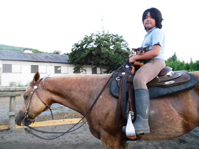 初めての乗馬教室