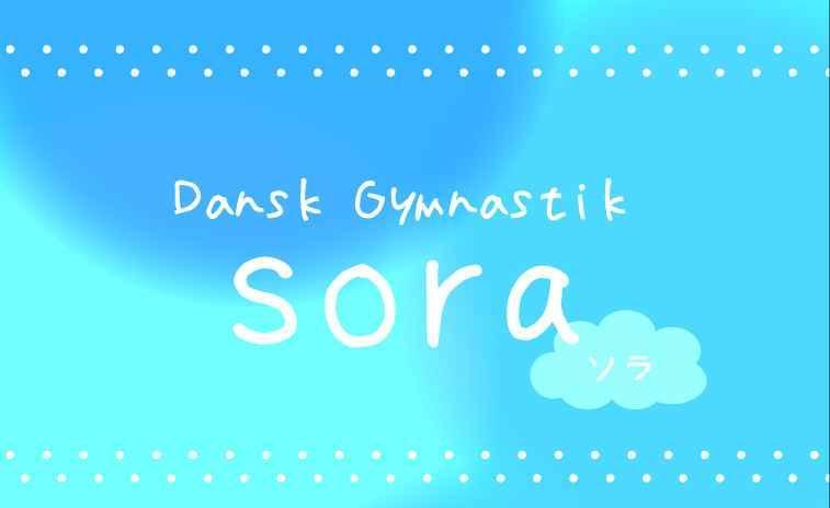 Dansk Gymnastik 「sora」
