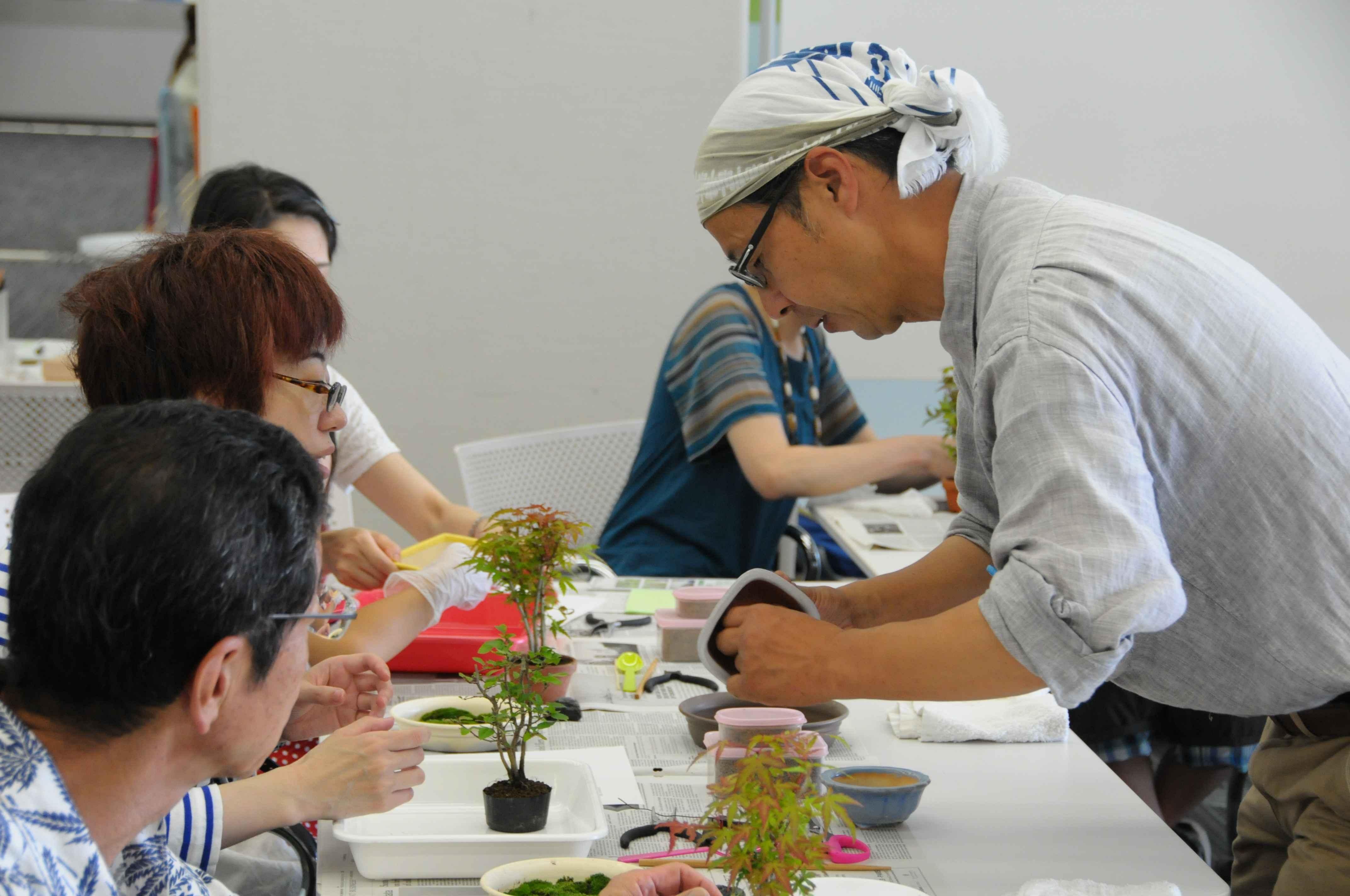 盆栽教室 小粋庵 上野グリーンクラブ・盆栽教室